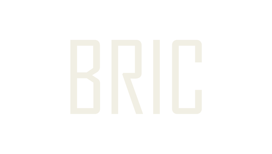 BRIC Foundation